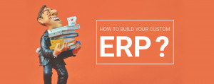 build-your-own-custom-erp